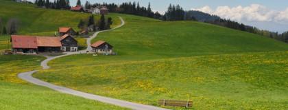Belagssanierung FG Tanne-Bensol, Oberegg